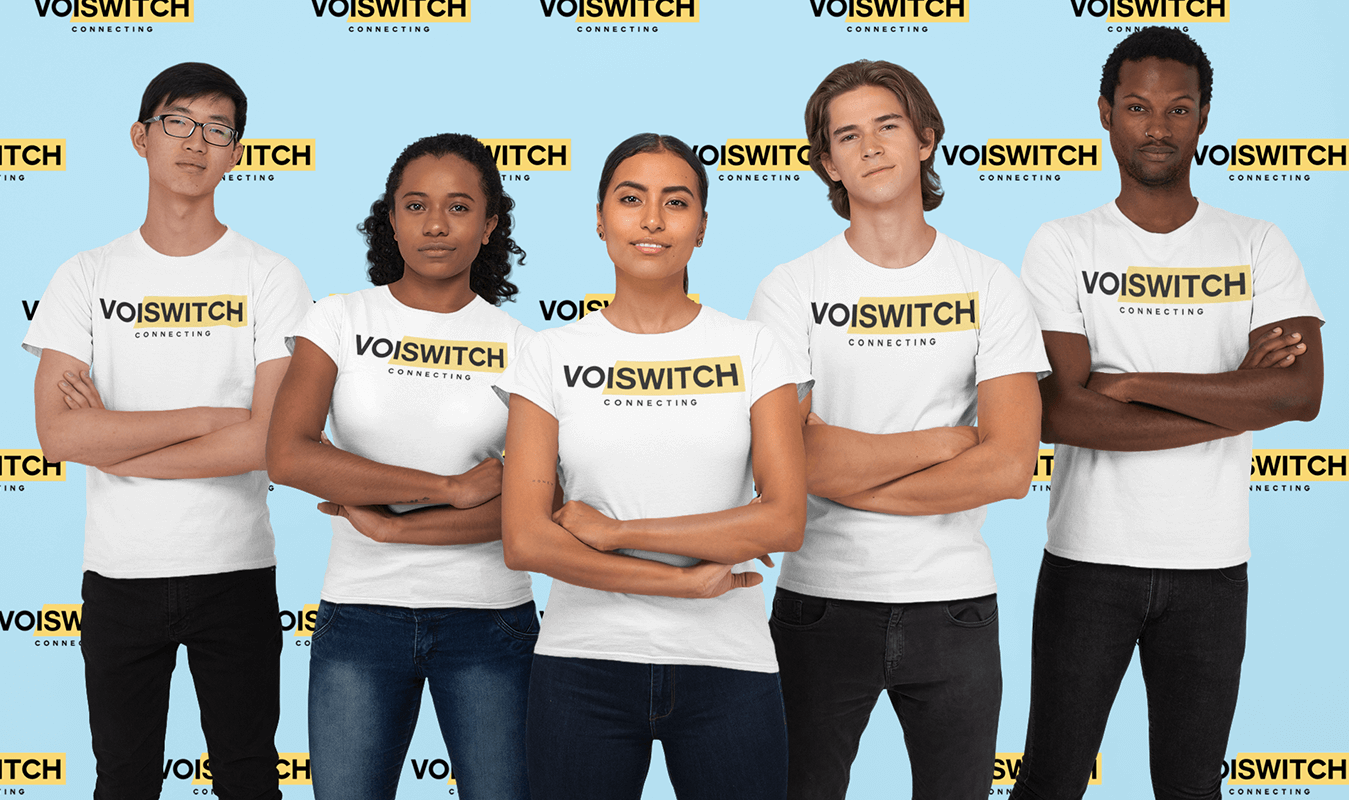 Voiswitch Interns