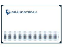 Grandstream RFID CARD 100